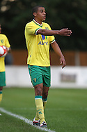 Tom Adeyemi of Norwich in action during a pre season friendly at New Lodge Stadium, Billericay...Picture by Paul Chesterton/Focus Images Ltd.  07904 640267.4/8/11