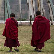 Young monks walking at the Chimi L'hakhang Temple, near Sopsokha Village, Punakha District, Bhutan