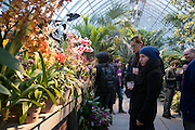LGBT Orchid Evening at the New York Botanical Gardens in New York City on March 23, 2016 (Photo by Ben Hider)