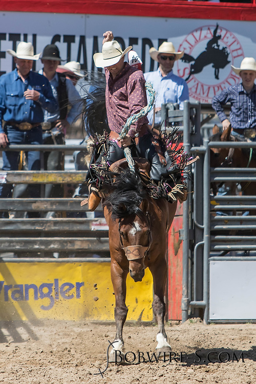 Saddle bronc rider Jake Foster rides Summit Pro Rodeo's 144 in the first performance of the Elizabeth Stampede on Saturday, June 2, 2018.