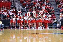 10 December 2016:  Redbird Cheerleaders during an NCAA  mens basketball game between the UT Martin Skyhawks and the Illinois State Redbirds in a non-conference game at Redbird Arena, Normal IL