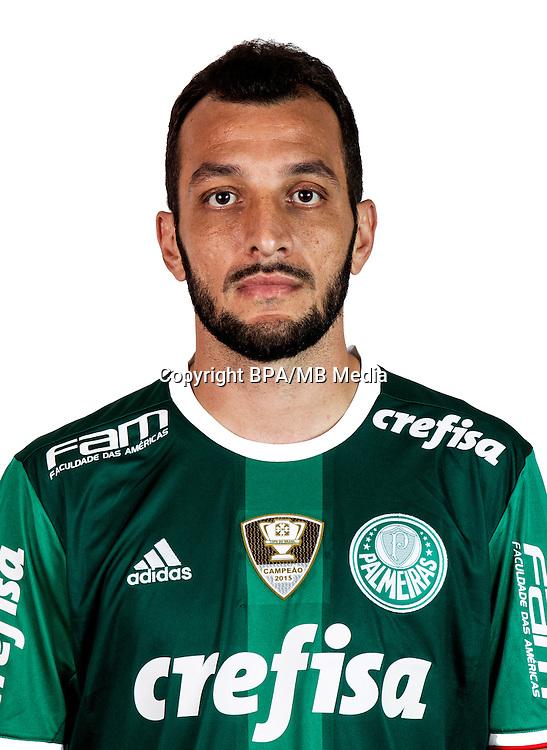 Brazilian Football League Serie A / <br /> ( Sociedade Esportiva Palmeiras ) - <br /> Eduardo Luis Abonizio De Souza &quot; Edu Dracena &quot;