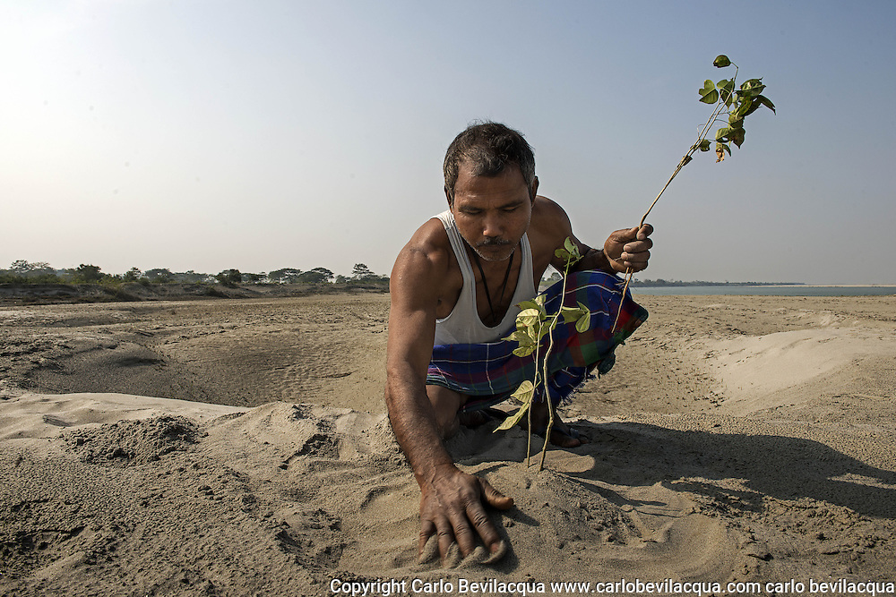 Jadav Molai Paleng The Forest Man<br /> <br /> The story of Jadav Payeng Molai is told by the French writer Jean Giono in his book The Man Who Planted Trees.<br /> <br /> In fact he has planted &nbsp;a tropical forest of 1500 hectares on a sandbar in the heart of the Brahmaputra River which  had been devastated by floods in 1979.<br /> Jadav Payeng belongs to the ' Mising ' tribe and today lives in Kokilamukh , a village near the river Bramhaputra in the district of Jorhat , Assam. This  state in North East India is where he dwells  in a small hut which he shares with his wife Binita and their three children, two boys and a girl . The youngest child &nbsp;shares his father's love for nature and the forest. &nbsp;Locals call him the Small Mulai .<br /> His wife is proud, but she often feels lonely  because Molai spends most of his time in the forest.<br /> In 1979 Javdav Molai Payng was 16 years old when huge floods devastated the lands adjacent to the river, sweeping away trees, houses and villages. Many animals, snakes in particular, died. Molai found them lifeless on the sand banks. It was the turning point of his life. He started planting bamboo trees on behalf of the forestry division . He lived and worked alone in the sand bar. Several  years later Molai had transformed the sandy island into  a bamboo forest . He has not looked back since. He has never stopped  , choosing to plant trees and transform the whole area of the island into a forest. Planting trees and bringing plants, animals and insects from his village . The sand bar has thus thrived into a full forest of 1500 hectares , with several thousand trees populated by birds and deer which in turn have attracted predators such as vultures and tigers, and even elephants and rhinos , which migrate  from the nearby Kaziranga park .<br /> Molai &lsquo;s income derives from the milk of cattle that he raises near the forest. Sometimes tigers have killed some animals but Molai doesn't &nbsp;blame them for this is nature&rsquo;s cycle.<br /> Jadav Mulai has been repeatedly awarded accolades
