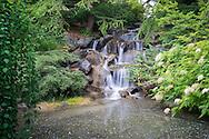 Waterfall at VanDusen Botanical Garden, Vancouver, B.C.