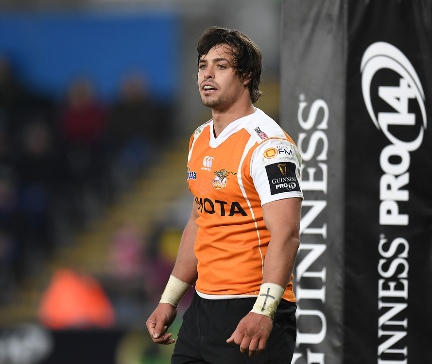 Cheetahs' Francois Venter in todays match<br /> <br /> Photographer Mike Jones/Replay Images<br /> <br /> Guinness PRO14 Round Round 16 - Ospreys v Cheetahs - Saturday 24th February 2018 - Liberty Stadium - Swansea<br /> <br /> World Copyright © Replay Images . All rights reserved. info@replayimages.co.uk - http://replayimages.co.uk