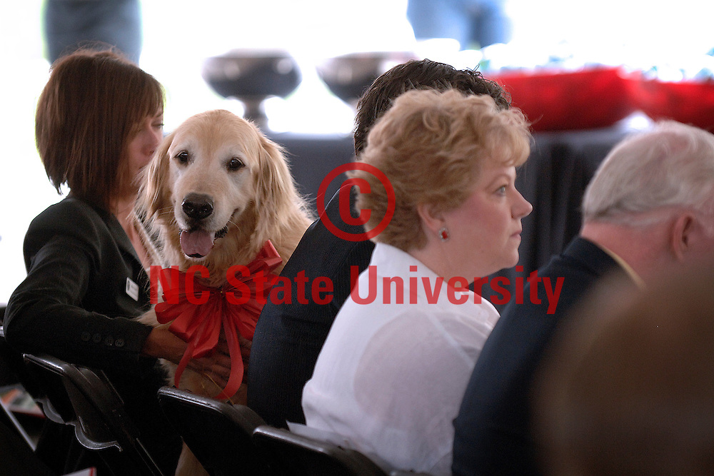 One of the Terry's dogs enjoys the view of the audience during the Terry Center dedication. Photo by Marc Hall