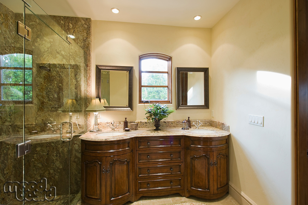 Bathroom with two sinks and shower room