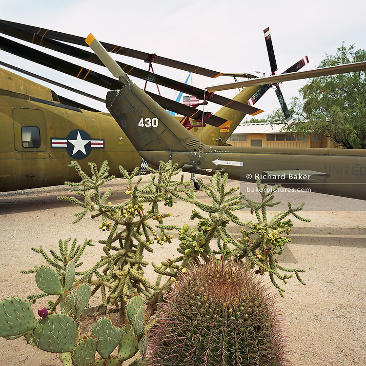 Two US Navy helicopters have been parked next to some cacti at the Pima Air and Space Museum near Davis Monthan Air Force base, Tucson, Arizona. In the arid desert heat we see only the rear sections of the aircraft, their rotors have been moved into a storage position and so echo the arm-like form and camouflaged tones of the cactus branches. The ground is sandy from the desert floor and soft, overhead light casts a shadow beneath the aircraft's fuselage. Picture from the 'Plane Pictures' project, a celebration of aviation aesthetics and flying culture, 100 years after the Wright brothers first 12 seconds/120 feet powered flight at Kitty Hawk,1903. .