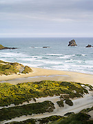 High-angle view of Sandfly Beach and Bay, on the Otago Peninsula, near Dunedin, Otago, New Zealand