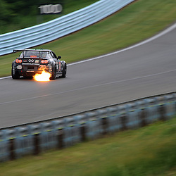 05 June 2010: Grand Am Sahlen's Six Hour at the Glen at Watkins Glen International in Watkins Glen, N.Y.
