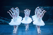 Swan Lake London 2015, Rojo & Lendorf