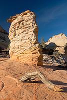 Sandstone hoodoo on slickrock mesa of Zion National Park Utah USA beautiful
