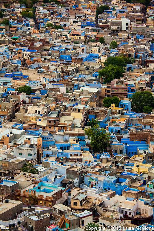 Jodhpur Blue City from above, India