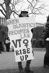 """When Injustice Becomes Law VT Rise Up"" at the Women's March on Washington, D.C."