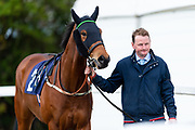 Temple Of Wonder ridden by Richard Kingscote and trained by Charlie Wallis in the Avon Valley Cleaning And Restoration Handicap race.  - Ryan Hiscott/JMP - 06/05/2019 - PR - Bath Racecourse- Bath, England - Kids Takeover Day - Monday 6th April 2019