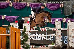 WOLF Cedric (GER), Louisville<br /> Leipzig - Partner Pferd 2019<br /> Equiline Youngster Cup<br /> 1. Qualifikation Youngster Tour für 7 und 8 jährige Pferde<br /> 17. Januar 2019<br /> © www.sportfotos-lafrentz.de/Stefan Lafrentz