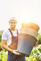 Portrait of mature male gardener carrying pots in shop