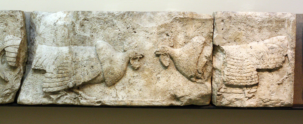 Wild fowl. The birds on the frieze may have represented sacrificial offerings to the deceased in whose honour the building was constructed. Cockerels also appear on the east side of the tomb of Kybernis. Evidence suggests that it was a Lycian, and also Persian tradition to sacrifice cockerels at the tombs of heroes. Another slab of the same Frieze was found during more recent excavations and is now in Antalya Museum