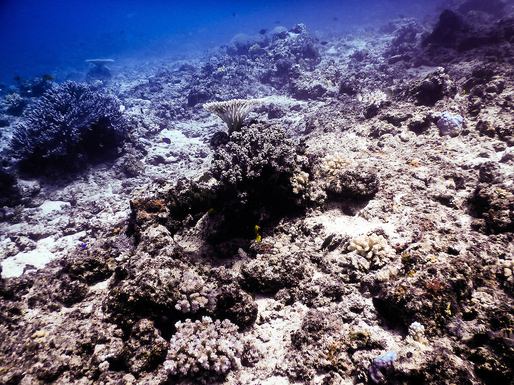 Great Barrier Reef, damages