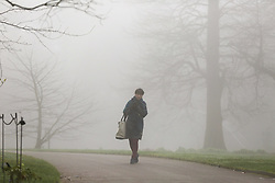 © Licensed to London News Pictures. 06/02/2020. London, UK. A woman walking in Kew Gardens during dense fog in west London. Photo credit: Dinendra Haria/LNP