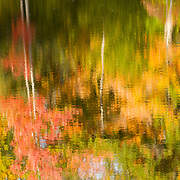 Reflections of fall colors in a pond in New Ipswich, NH, USA
