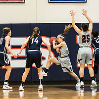 Women's Basketball: DeSales University Bulldogs vs. Middlebury College Panthers
