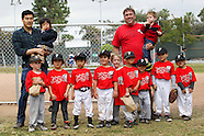Joe Mathews' T-ball Lugnuts