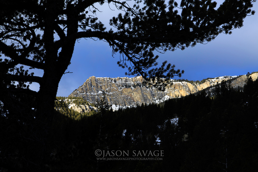 Mountains in the Scapgoat Wilderness, Montana.