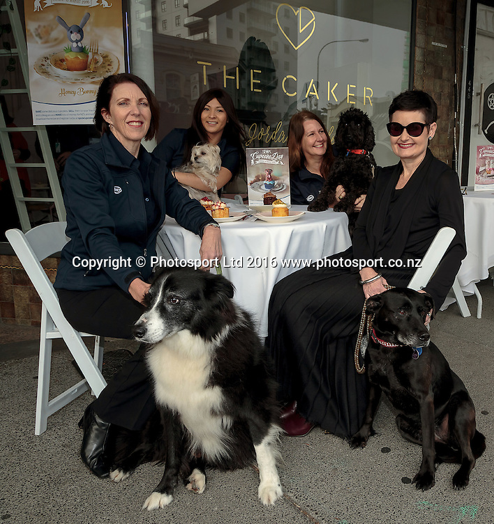 20160803 SPCA Cupcakes. Publicity photo for the SPCA cupcake day, Andrea Midgen, SPCA Auckland CEO, and her dog Max, Lillian Chueh with Mwaji, Bridget Vercoe with Frankie and Sarah Williamswith Sina photographed at The Cakery, Karangahape Road, Auckland in advance of the fund raising day Monday August 15th 2016. Photo: David Mackay / www.photosport.nz