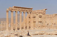 Ruins of Palmira, Syria