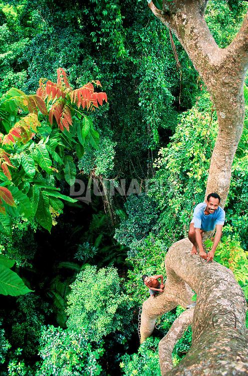 Back in 1998, I followed bird poachers into the rainforest canopy in Seram, Indonesia