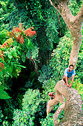 Back in 1998, I followed bird poachers into the rainforest canopy in Seram, Indonesia