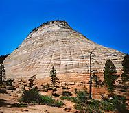 The Checkerboard Mesa, A Petrified Sand Dune At Zion National Park, Utah, USA