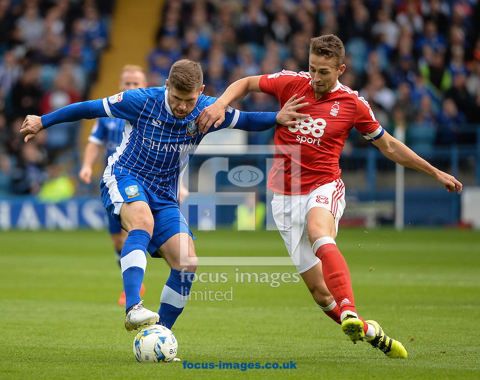 Gary Hooper of Sheffield Wednesday and Chris Cohen of Nottingham Forest during the Sky Bet Championship match at Hillsborough, Sheffield<br /> Picture by Richard Land/Focus Images Ltd +44 7713 507003<br /> 24/09/2016