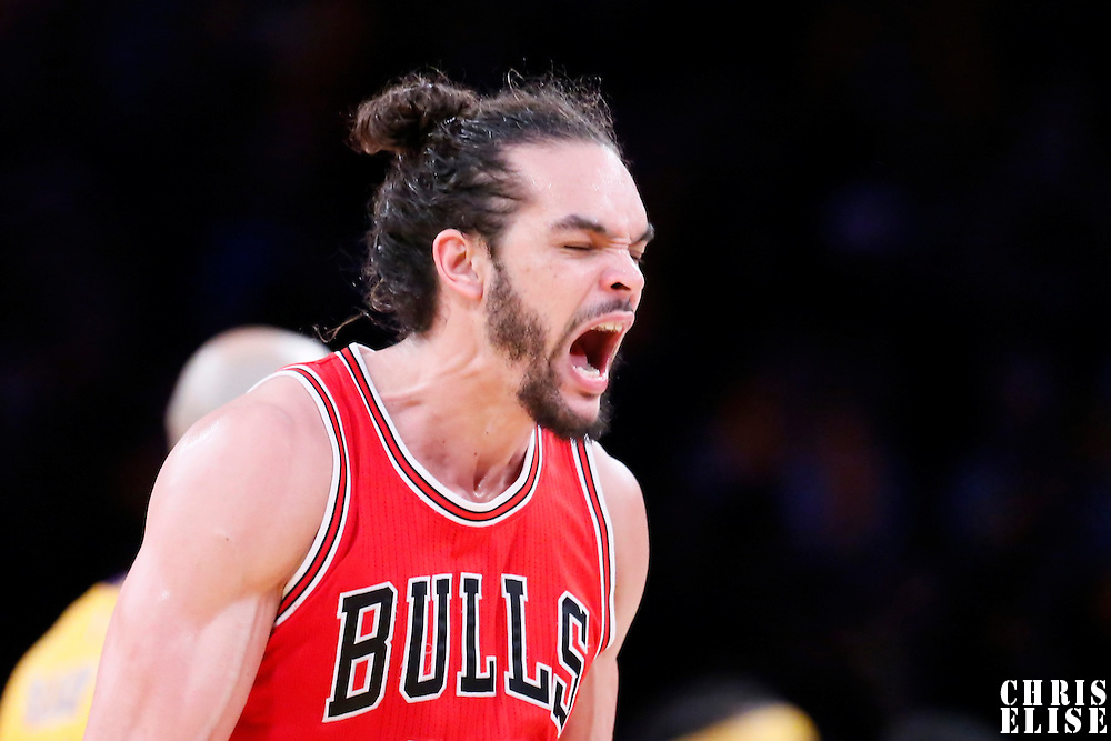 29 January 2015: Chicago Bulls center Joakim Noah (13) reacts during the Los Angeles Lakers 123-118 2OT victory over the Chicago Bulls, at the Staples Center, Los Angeles, California, USA.