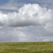 Nederland Zaamslag gemeente Terneuzen  19 juni 2010 20100619      .. Serie landschappen provincie Zeeland. Zeeuws-Vlaanderen, landschap dijk westerschelde. wolk en dijk, waterkering.   Foto: David Rozing, op de achtergond vaart een plezierjacht jacht.  uitzicht, uniek, unieke, veiligheid, vergezicht, vergezichten, verte, vrij, vrijheid weer, waaien, water level, waterbeheer, Waterbeheerplan, waterhuishouding, waterkering, Waterkeringen, waterkeringen, watermanagement, waterplan, waterproblematiek, waterstaatkundige, waterstand, watersysteem, waterveiligheid, waterveiligheid en gebiedsontwikkeling, waterwerken, weersomstandigheden, wei, weide, weidegang, weiland, weiland. Landscape, wijdheid, wijds, wijdsheid, wind, wit, witte, wolk, wolken, wolkenpartij, zeeland, zeeuws vlaanderen, zeeuws-vlaanderen, zeewering, zo vrij als een vogel, zware, zwitserleven gevoel   ..Foto: David Rozing