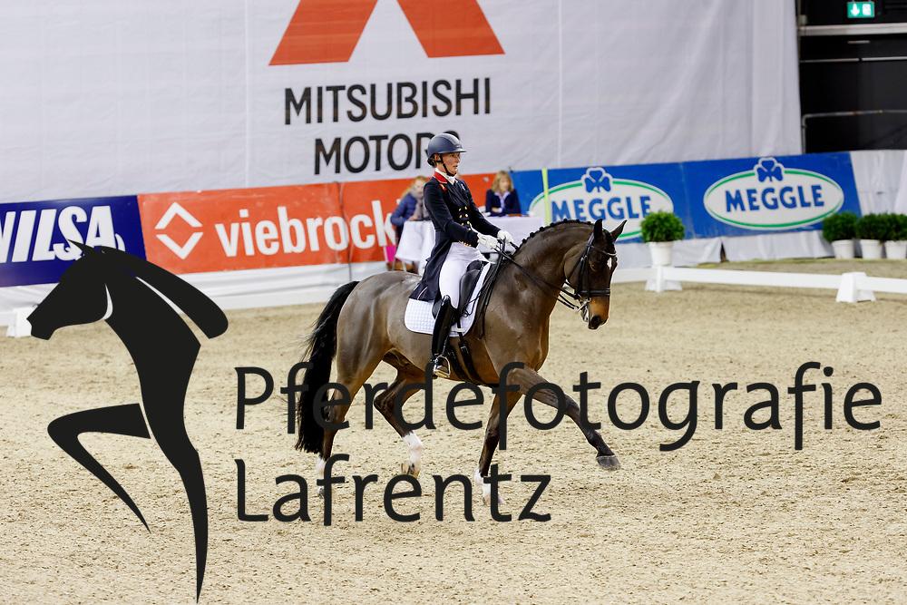 Butler, Lara (GBR) Rubin al Asad<br /> Oldenburg - AGRAVIS Cup 2017<br /> © www.sportfotos-lafrentz.de/Stefan Lafrentz