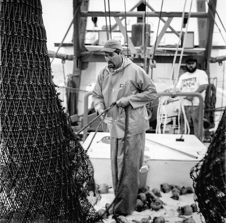 Untying the Nets | May 2003