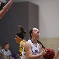 Women's Basketball: University of St. Thomas (Minnesota) Tommies vs. University of Wisconsin-Stevens Point Pointers
