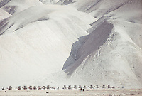 Caravan trail through the mountails of Afghanistan in 1971.