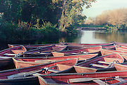 rowing boats moored on a lake