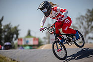 #155 (MECHIELSEN Drew) CAN  at Round 9 of the 2019 UCI BMX Supercross World Cup in Santiago del Estero, Argentina
