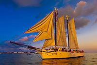 The schooner Western Union at sunset, off Key West, Florida Keys, Florida USA