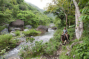 A man rides a mule along a riverbank in the Sierra Maestra mountains, Cuba