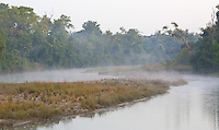 View of a tributary of the Karnali River at dawn, Bardia National Park, Nepal