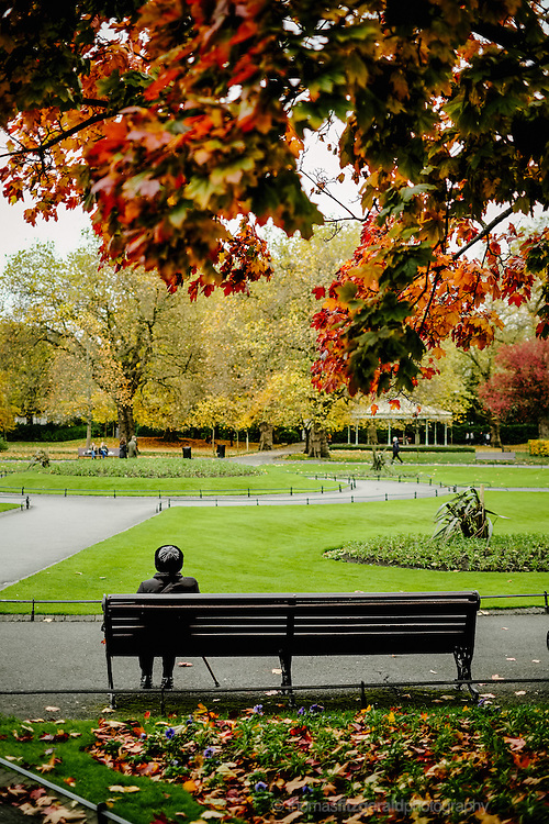 Person Sitting on Park Benches on a a dull Autumn Day