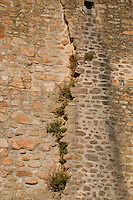 A cracked building facade with vegetation growing out of it as seen from the beach below at Mont St Michel.