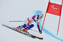 Henrieta Farkasova, Women's Giant Slalom at the 2014 Sochi Winter Paralympic Games, Russia
