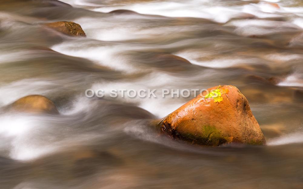 River Rocks at Zion National Park Utah