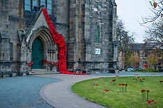 Remembrance Poppies,  Edinburgh, 2 November 2018